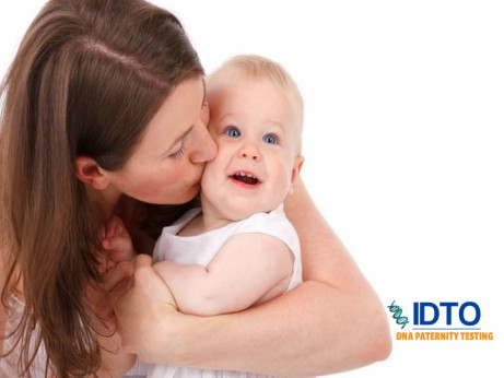 maternity dna test IDTO