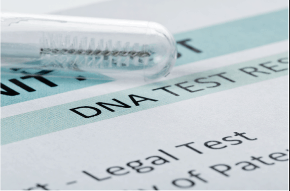 legal paternity test